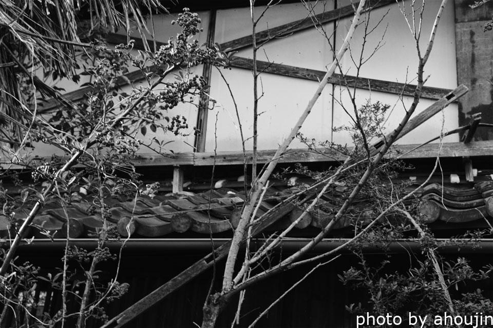 岡崎千鳥園